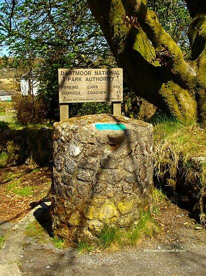 Parking Meter in Dartmoor by Charmiene Maxwell-Batten
