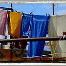 Two blue Towles - (Spain) by PhotoMairo