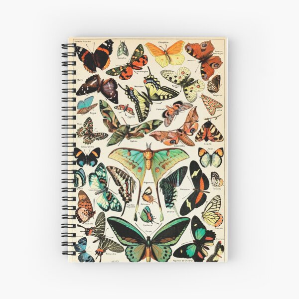 Papillon I Vintage French Butterfly Charts by Adolphe Millot Spiral Notebook