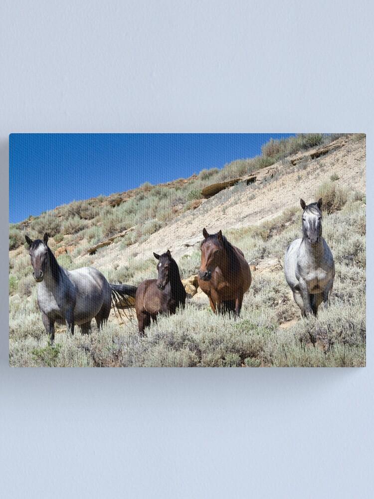 Alternate view of Wild Blue Roan Stallion - Family Portrait Canvas Print