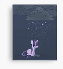 Rainy day pony Canvas Print