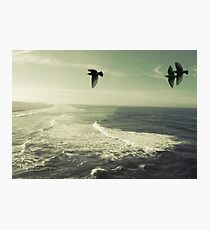 take me there Photographic Print