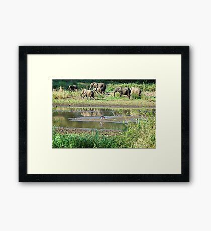 WILDERNESS MAGICAL MOMENTS - The Kruger National Park  Framed Print