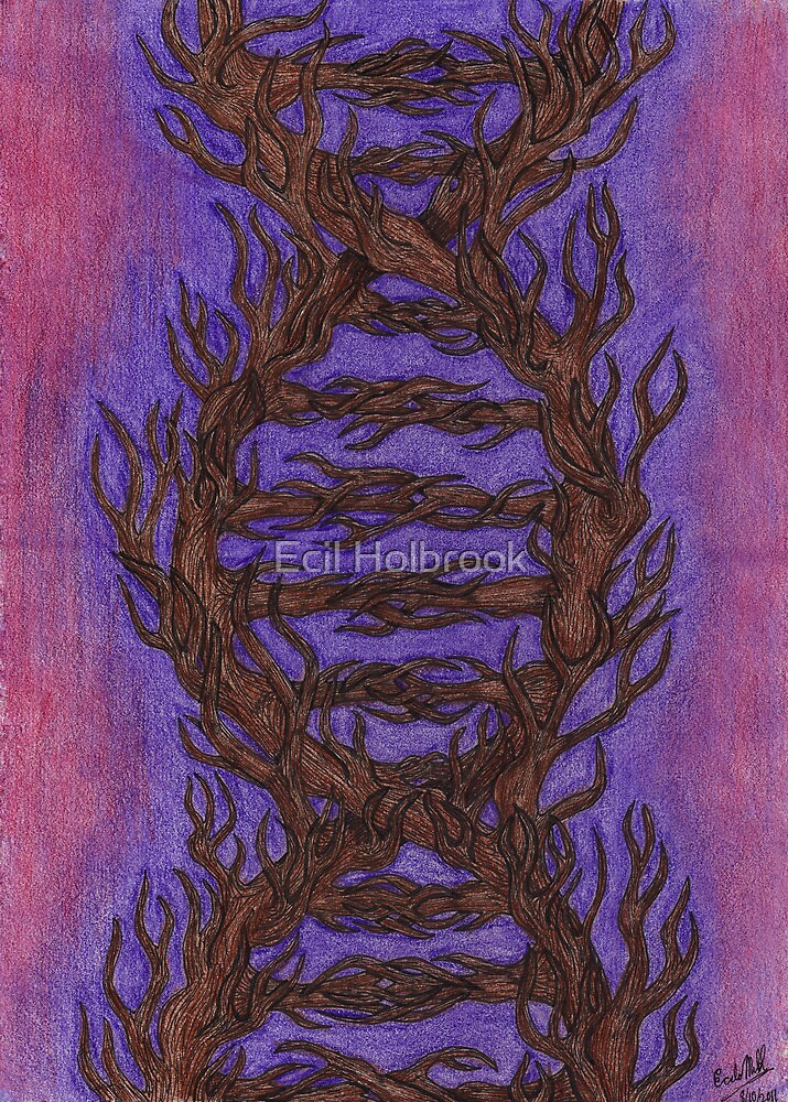 Life by Ecil Holbrook