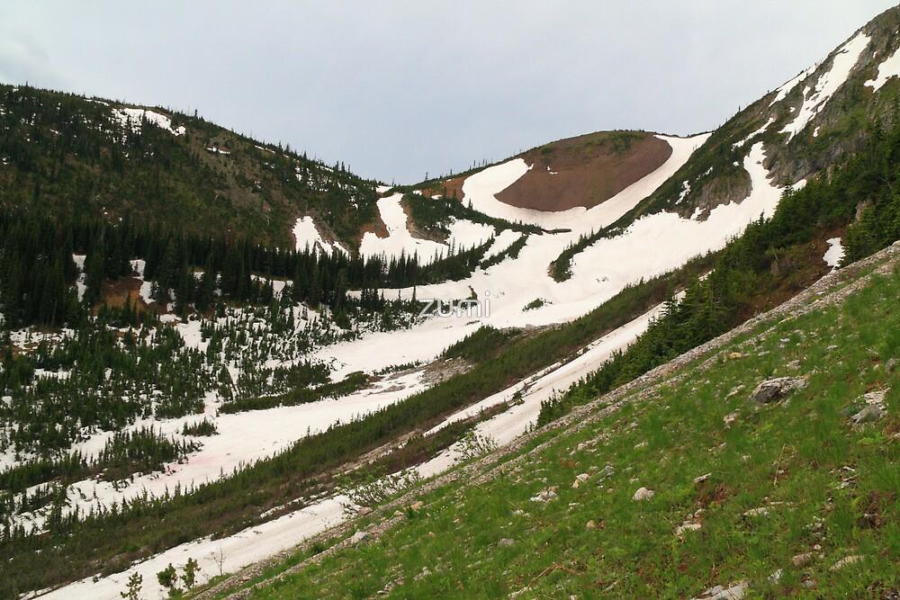 Snowy, grassy slopes by zumi