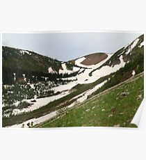Snowy, grassy slopes Poster