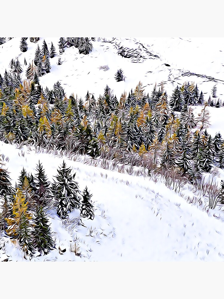 Swiss Winter Glacier 3000 Switzerland  by lifeinalps