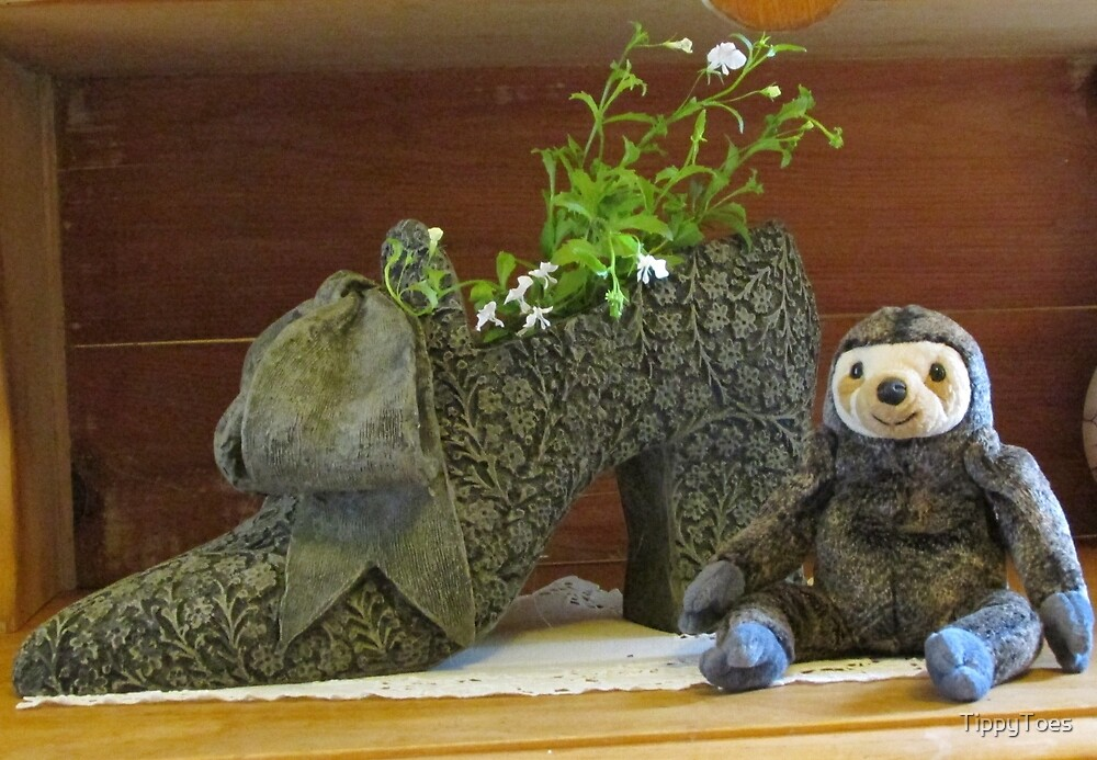 Sloth with Antique Shoe by TippyToes