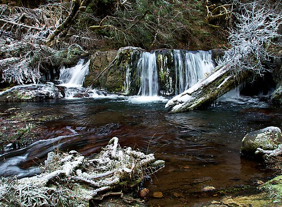 Fall Creek Falls Frost by Charles & Patricia   Harkins ~ Picture Oregon