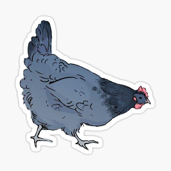 Blue Orpington Chicken Sticker