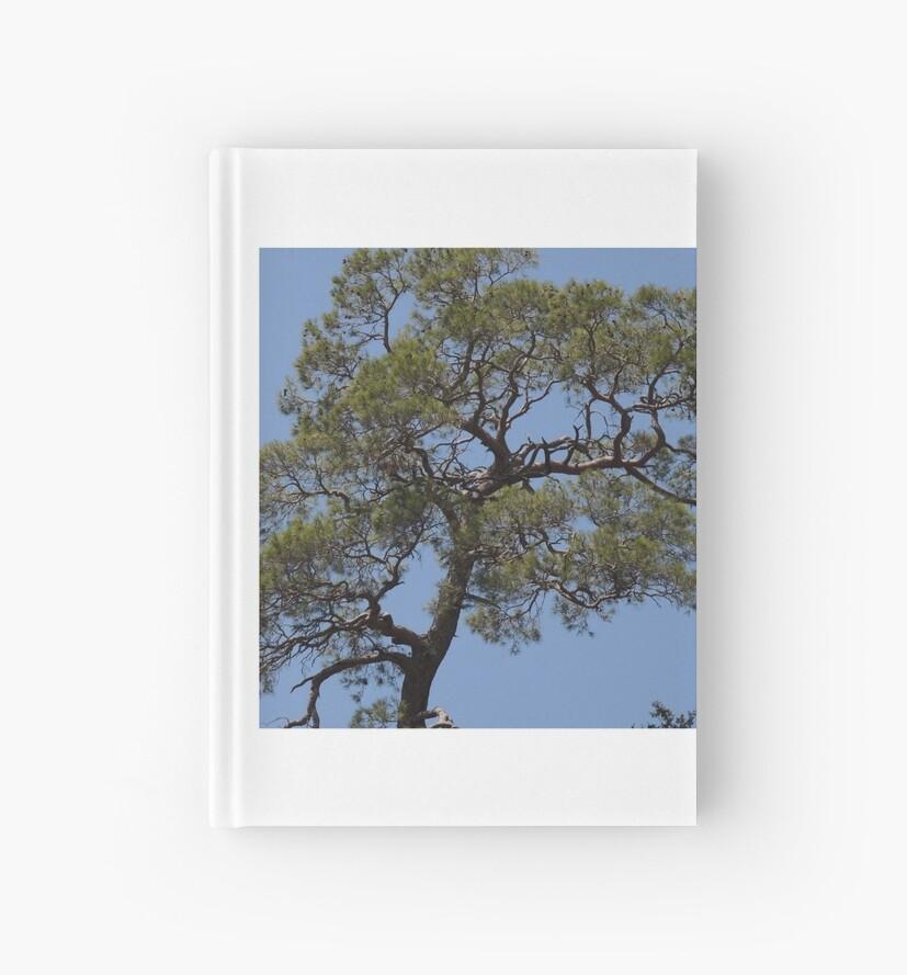 a tree from afar  by Neggsyy  K
