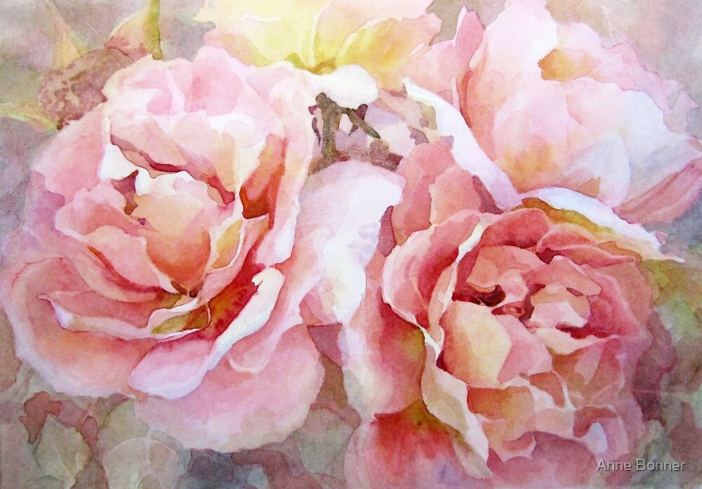 Summer Roses by Anne Bonner
