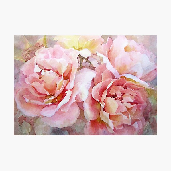 Summer Roses Photographic Print