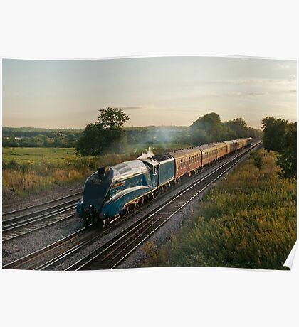 The Dorset Coast Express Poster