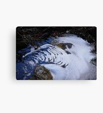 Freezing over Canvas Print