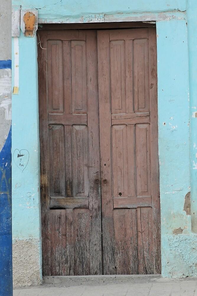 Brown Door in a Blue Wall by rhamm