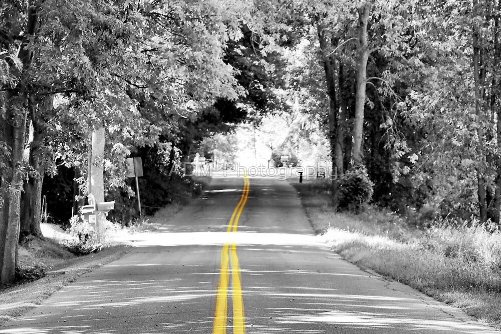The Road Home by Amber D Hathaway Photography