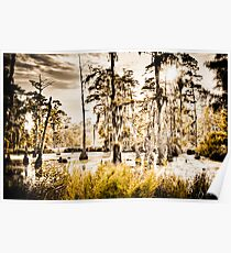 Sam Houston Swamp-4 Poster