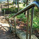 The Chrome Handrail.  by Eve Parry