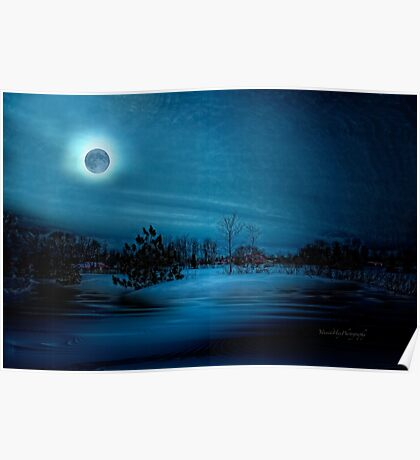 Moon Light Serenade Poster