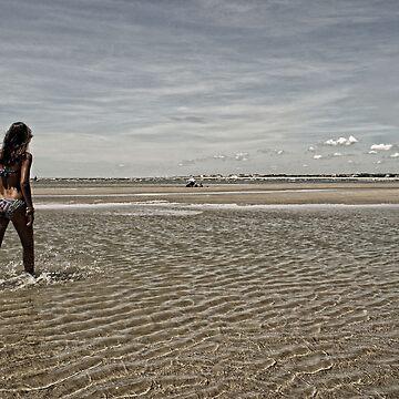 Low Tide by mittenphoto