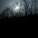 Mysterious Sun - Train to Poughkeepsie by charliebuterfly