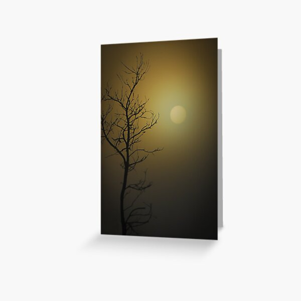 Morning skys Greeting Card