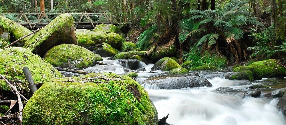 Bridge to falls by Callum Brown