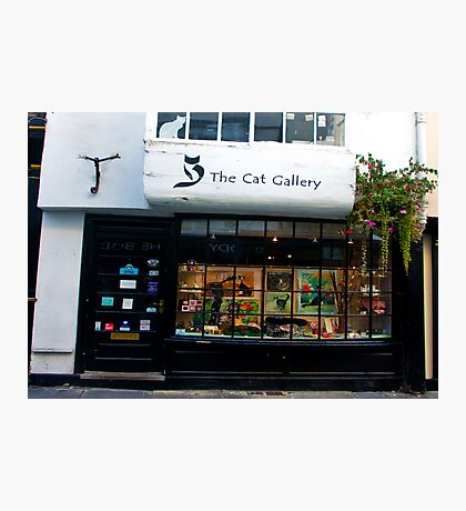 The Cat Gallery Photographic Print