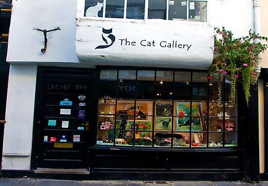 The Cat Gallery by Trevor Kersley