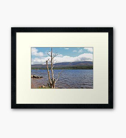Loch Morlich, Scotland Framed Print