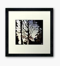 Water of Leith, Edinburgh Moonlight Drawing Framed Print