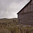 Old in Oregon  by DiamondCactus