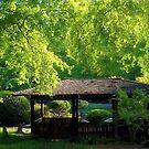 Spriiiiiiiiiiiiiiiing in the Botanical Gardens by pOOf