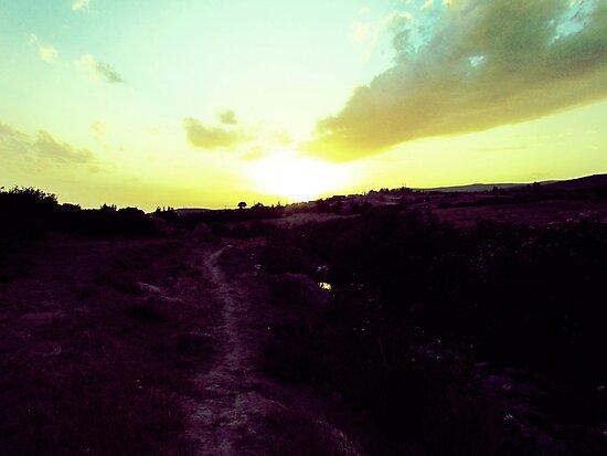 Walking Toward The Sun by Omar Dakhane