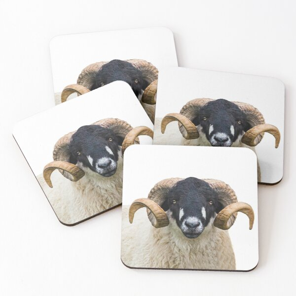 Swaledale sheep Coasters (Set of 4)
