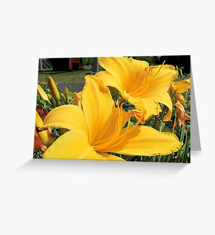 A feast for the eyes Greeting Card