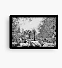 Winter Roads Canvas Print