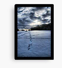 Snow Blue Canvas Print