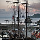 Charlestown a Cornish Harbour by Paul Gibbons