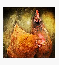 Urban Chicks ~ Photographic Print
