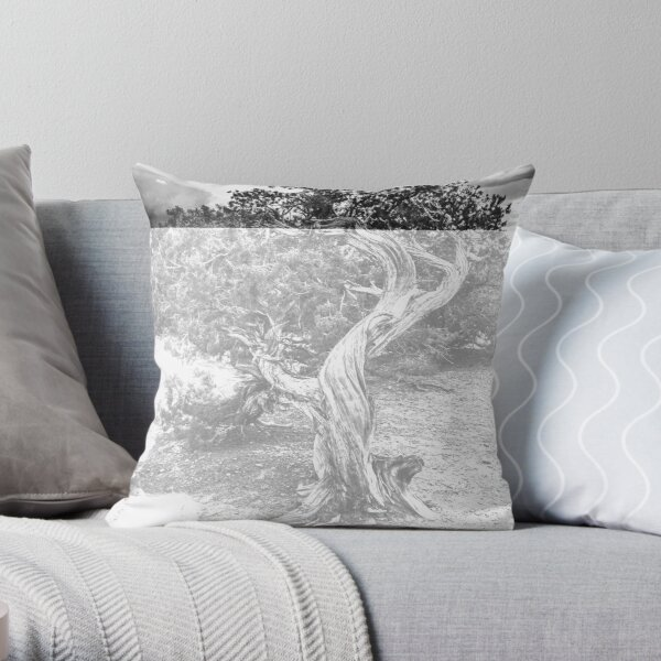 Twisted Wood in the Canyonlands Throw Pillow