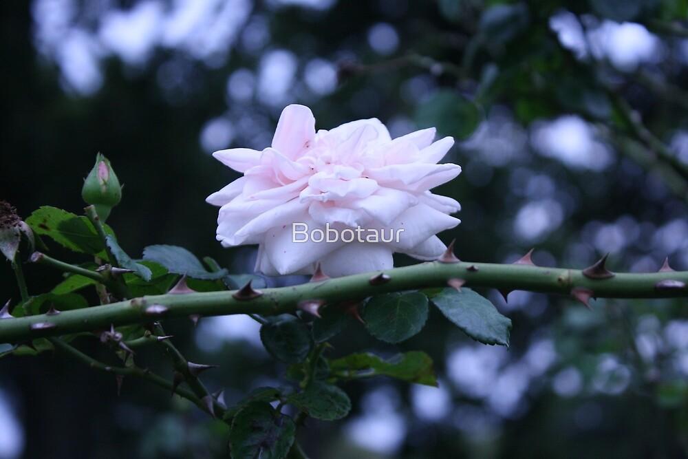 // Flower // by Bobotaur
