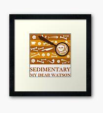 Sedimentary Watson! Framed Print