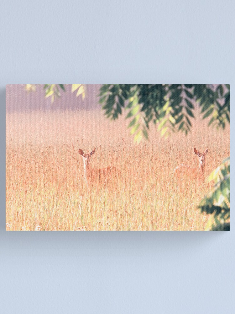 Alternate view of Double Vision Canvas Print