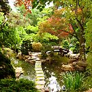 Tranquil Garden by SilverLilyMoon