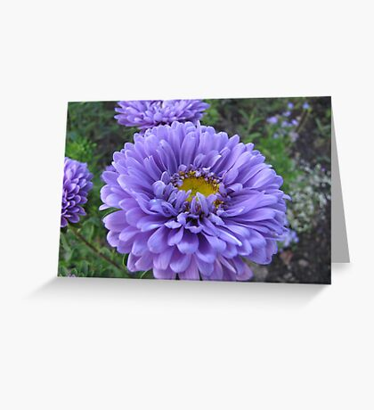 Decorated in blue Greeting Card
