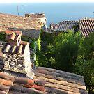 Looking towards Cap Ferrat by Fara