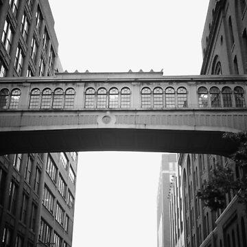 Chelsea Market Skybridge - Nueva York de vgucwaphoto