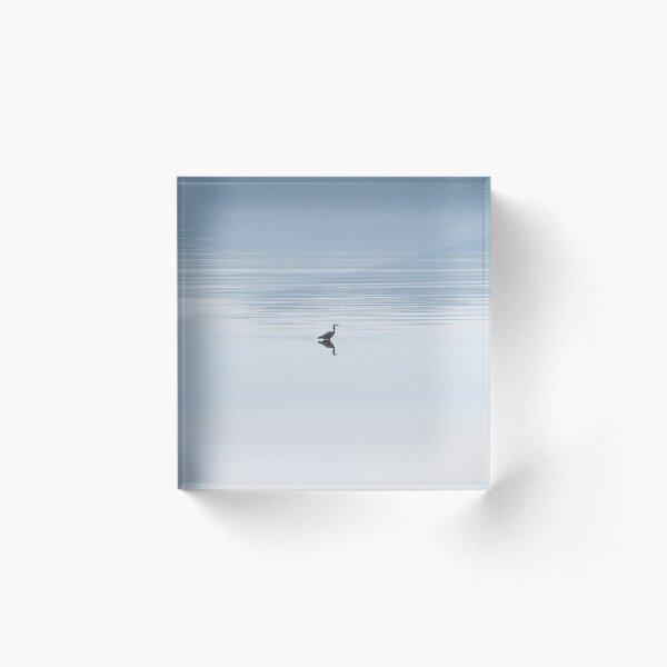 Heron in calm water Acrylic Block